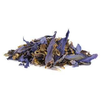 Blauer Lotus - Nymphaea caerulea