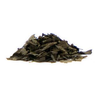 Salvia Extrakt 15x