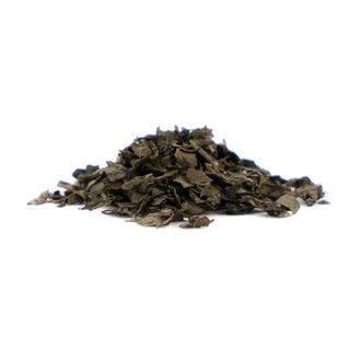 Salvia Extrakt 40x