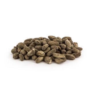 Voacanga Africana (5 grams)