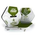 Little Dwarf Autoflowering (Zambeza) feminisiert