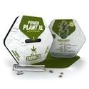 Power Plant XL Autoflowering (Zambeza) femminizzata