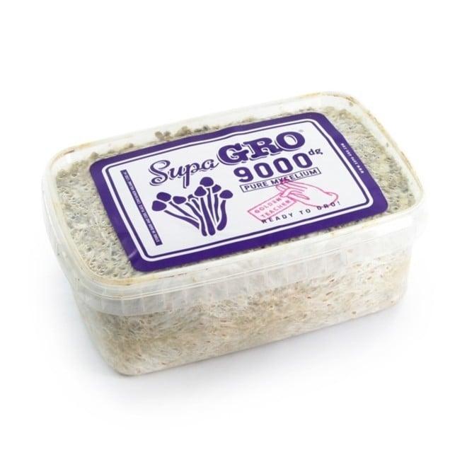 Supa Gro Kit 100% 'Golden Teacher'