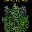 VIP Auto Mix (VIP Seeds) femminizzata
