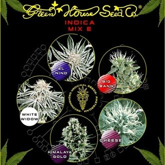 Indica Mix E (Greenhouse Seeds) feminisiert