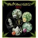 Indica Mix I (Greenhouse Seeds) feminisiert