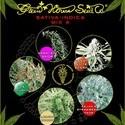 Sativa/Indica Mix A (Greenhouse Seeds) feminized