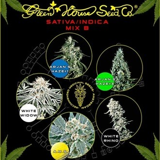Sativa/Indica Mix B (Greenhouse Seeds) feminisiert