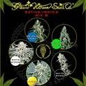 Sativa/Indica Mix B (Greenhouse Seeds) feminized