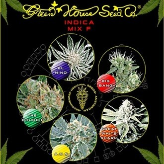 Indica Mix F (Greenhouse Seeds) feminized