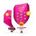 Candy Kush Express - Fast Flowering (Royal Queen Seeds) feminisiert