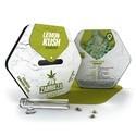 Lemon Kush (Zambeza) feminisiert
