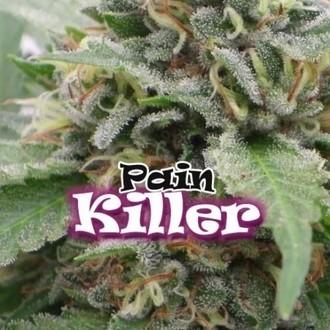 PainKiller (Dr. Underground) femminizzata