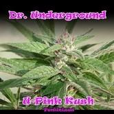 U - Pink Kush (Dr. Underground) femminizzata