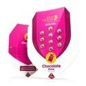 Chocolate Haze (Royal Queen Seeds) feminisiert