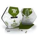 Vanilla Ice Autoflowering (Zambeza) feminisiert
