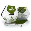 NYC Diesel Autoflowering (Zambeza) Femminizzata