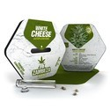 White Cheese Autofiorente (Zambeza) Femminizzata