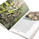 ­Marijuana Smoker's Guidebook