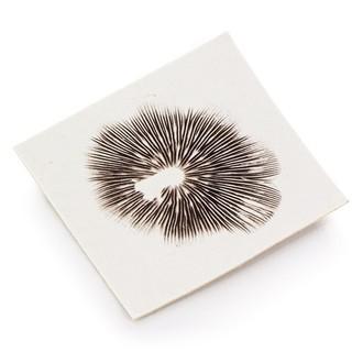 Spore Print Psilocybe Mexicana Truffle