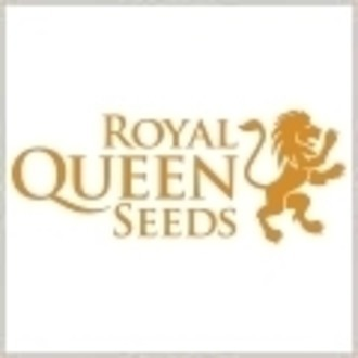 Free seed (Royal Queen Seeds) Sour Diesel