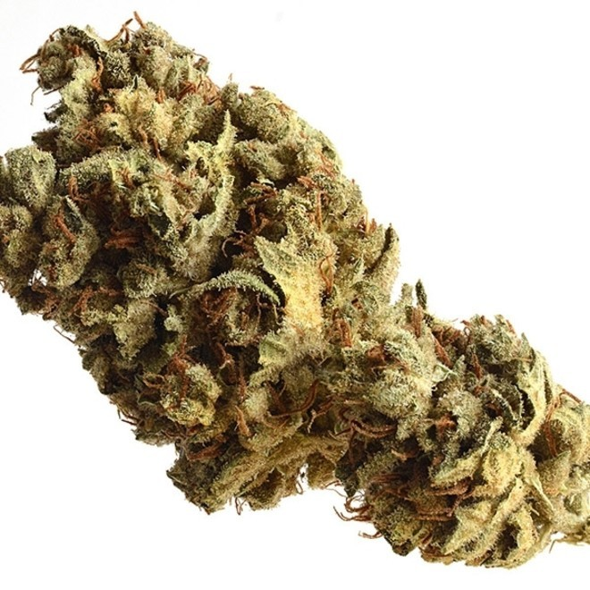 """Image result for pineapple kush"""" best weed in Amsterdam"""