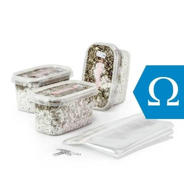 kit di coltivazione variety pack omega mushmush zamnesia