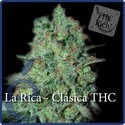 La Rica Classic THC (Elite Seeds) feminized