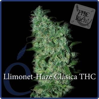 Llimonet Haze Classic THC (Elite Seeds) feminisiert