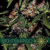 Mighty Mango Bud (Vision Seeds) Femminizzata