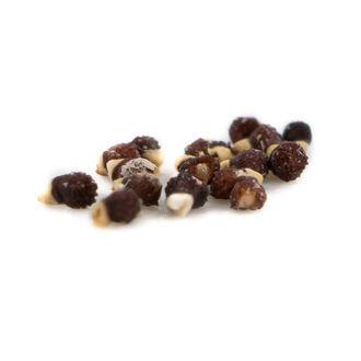 Aztek Cactus (Aztekium ritteri) 20 seeds