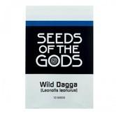 Wild Dagga (Leonotis leonurus) 10 seeds