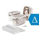 Zamnesia Zuchtset Sortenpackung DELTA