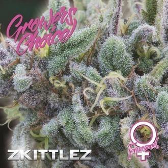 Zkittlez (Growers Choice) Feminized