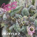 Zkittlez (Growers Choice) Femminizzata