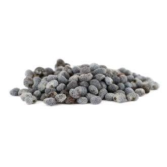 Poppy (Papaver somniferum) Seeds