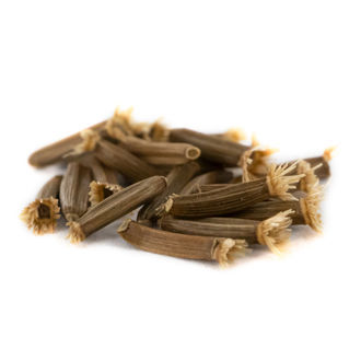 Elecampane (Inula helenium) 20 Seeds