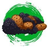 CBD Blackberry Crumble (Sumo Seeds) feminized