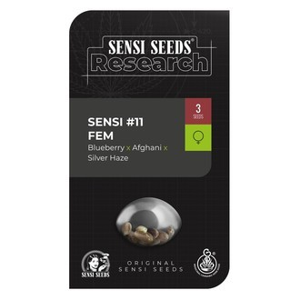 Sensi 11 (Sensi Seeds Research) feminisiert
