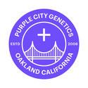 THC Bomb x Pre 98 Bubba (Purple City Genetics) feminized