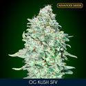 OG Kush SFV (Advanced Seeds) feminized