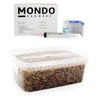 Mondo Grow Box