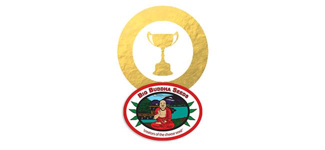 Auszeichnungen von Big Buddha Seeds