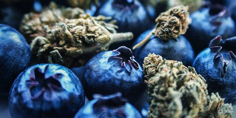 Blueberry: Aroma Und Wirkung