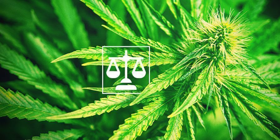 Legalität Cannabis