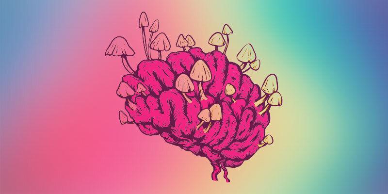 Moderne Erkenntnisse über die Auswirkungen von Zauberpilzen auf das Gehirn