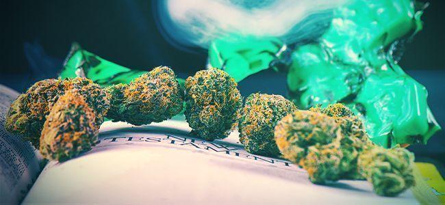 Besten Bücher Über Den Cannabisanbau