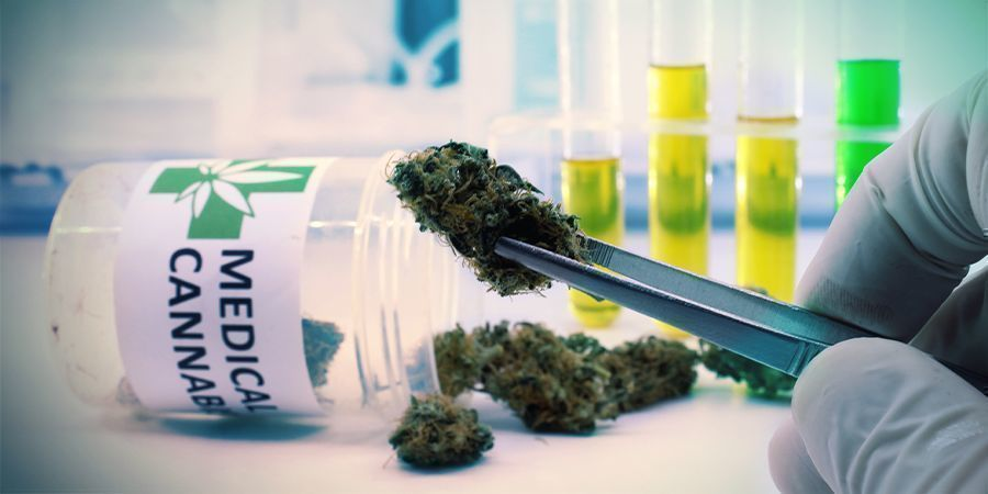 Medical Or Recreational Cannabis What Does This Mean To You