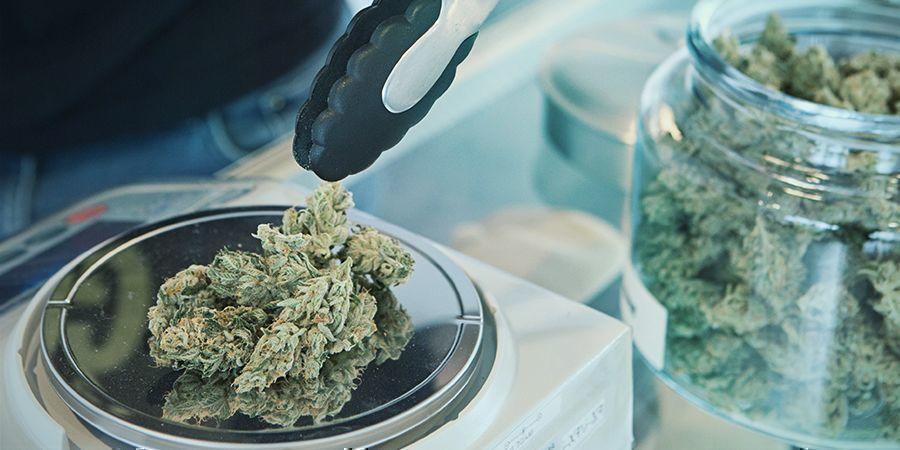 Uruguayische System zur Cannabislegalisierung