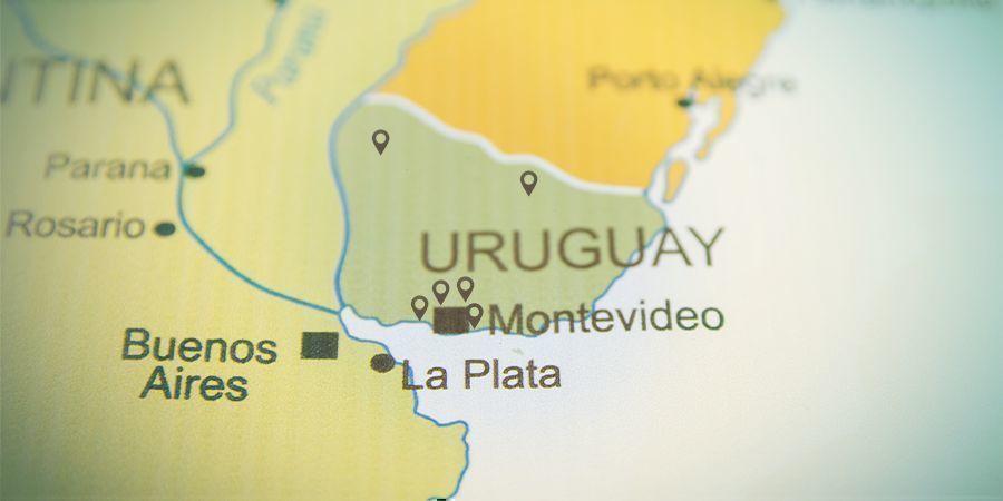 Weniger Als 20 Zugelassene Apotheken In Uruguay Cannabis Zu Verkaufen
